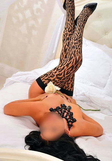 80 london escorts